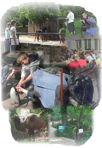 Zooschule Halle